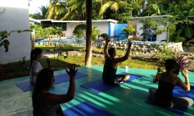 Wellness & Yoga